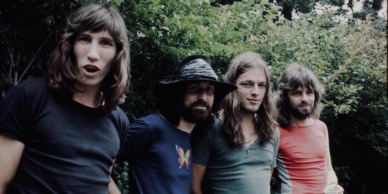Pink Floyd послужили вдохновением для названия нового вида смертоносных креветок
