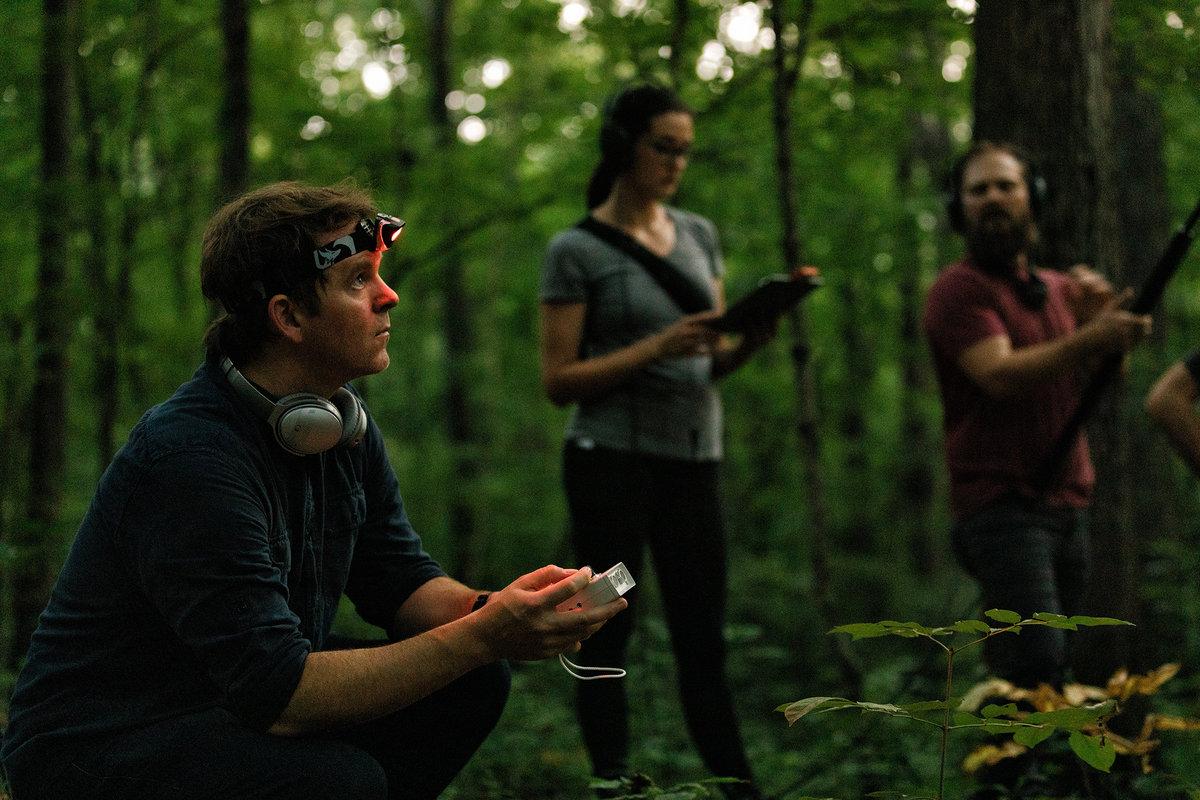 "Field Works представил инструментальный альбом ""Maples, Ash, and Oaks"" 1"