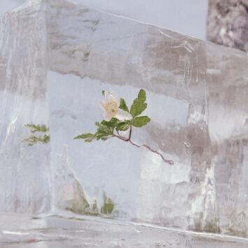 Что послушать на этих выходных: танцевальная ода Манчестеру от W. H. Lung, цифровое путешествие Magdalena Bay, кинематографичный лоск BADBADNOTGOOD 4